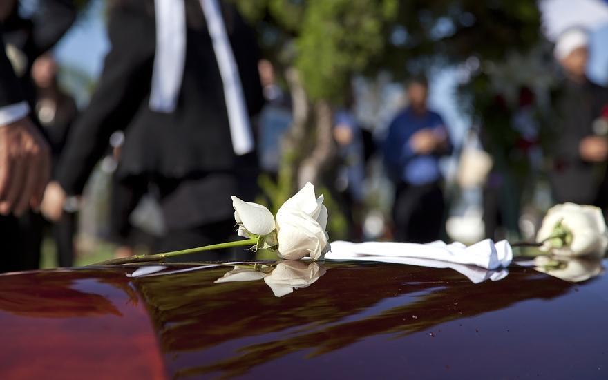 Róża natrumnie