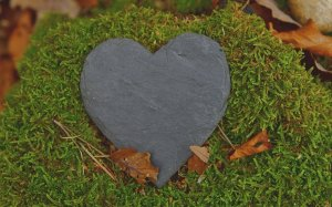 tabliczka, serce z kamienia, zielona trawa